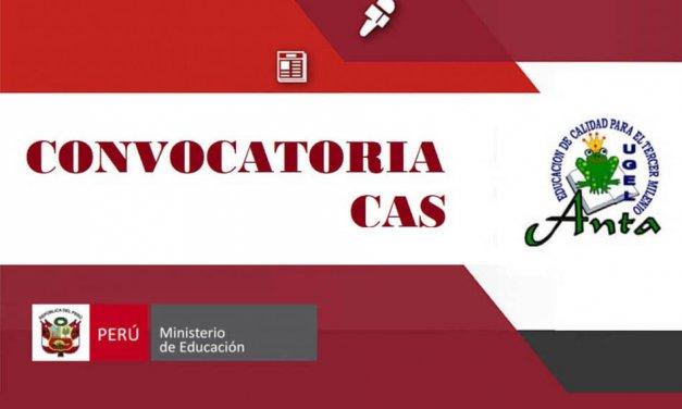 CONVOCATORIA CASNº 018 – 2018 PARA LA UE 315 EDUCACIÓN ANTA